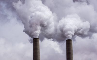 Business Roundtable endorses carbon pricing